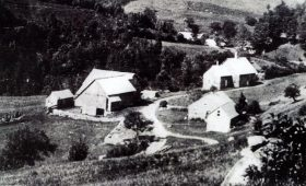 Early view of Dailey Hollow